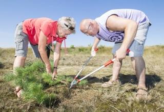 Hoe een burenhulpsite de welzijnsorganisatie ONS helpt