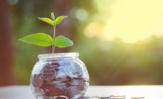 potje met plantje en geld