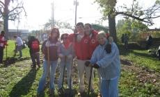 Vraag vrijwilligers: wat kun/wil jij bijdragen?